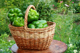 Basket with green pepper