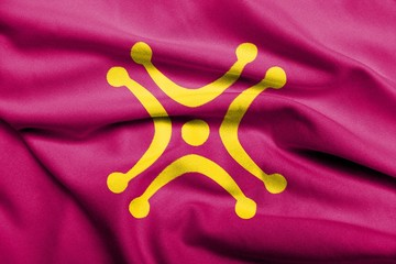 3D Flag of Cantabria - Labaro satin