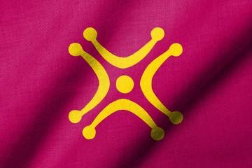 3D Flag of Cantabria - Labaro waving