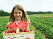 Girl with basket strawberry