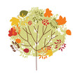 Quadro autumnal tree