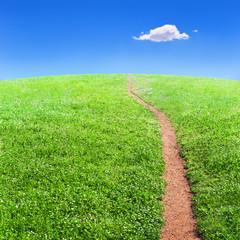 Sentiero silenzioso nel verde