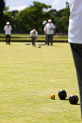 Game of Lawn Bowls