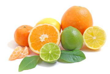 Arrangement mit Zitrusfrüchten/citrus fruits