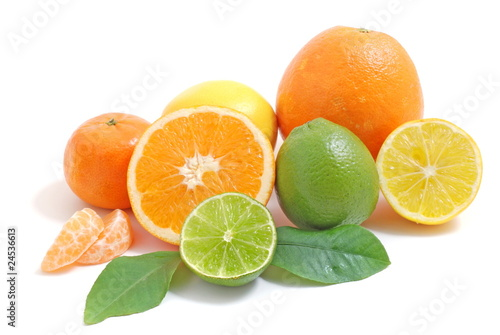 Arrangement mit Zitrusfrüchten/citrus fruits