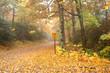 Alone on Blue Ridge Parkway