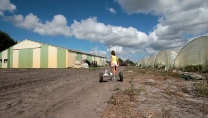 quitter les serres de la ferme