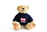 "teddy bear with ""vienna"" jumper"