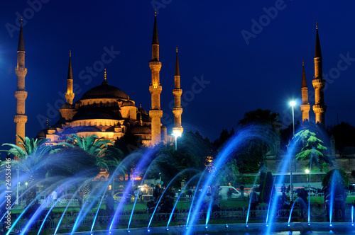 Blue mosque and fountain