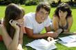 Jugendliche besprechen ein Projekt im Park