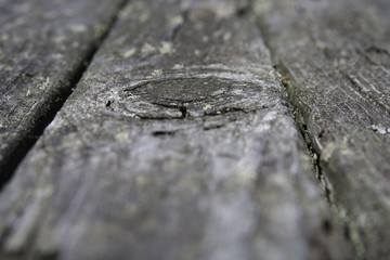 Detail from an Old Wooden Deck