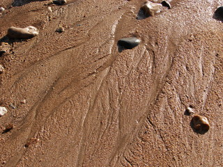 Natural patterns on a sandy beach (Wembury, UK)