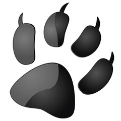 Animal pawprint