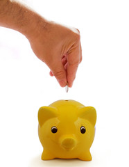 Piggy Bank Savings Isolated