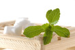 Stevia Rebaudiana Süßkraut Blatt mit Zucker