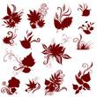 Big Vector set of silhouette - autumn leafs. Thanksgiving