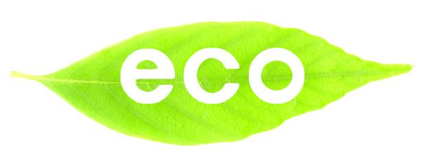 葉と白抜き文字(eco)