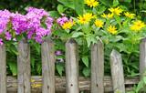 Fototapety Der schöne Garten - Beautiful Garden