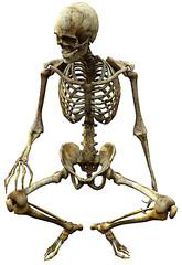 skeleton seated