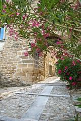 Ruelle médiévale en Provence à Grillon © Alexi Tauzin