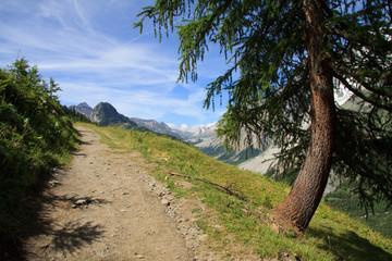 sentiero per il rifugio Bertone - val Ferret
