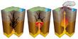 Leinwandbild Motiv Volcanisme - Etapes d'une éruption