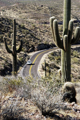 Desert Road 4