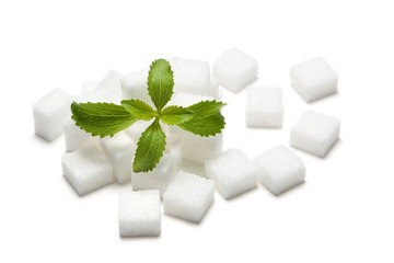 Stevia und Zuckerwürfel