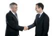 adult businessman handshake expertise portrait