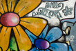 Quadro Graffiti with flowers