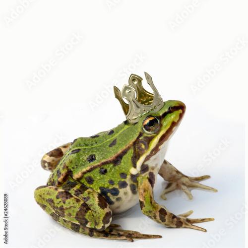 Tuinposter Kikker Froschkönig