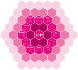 Pink Hexagons Calendar 2011