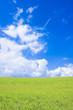 草原と青空と飛行機雲