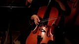 close-up view on violoncello in orchestra poster
