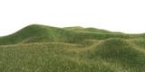hügelwiese im sommer