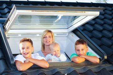 Dachfenster 010910