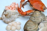 Fresh Seafood on a Plate Being Prepared to Cook poster