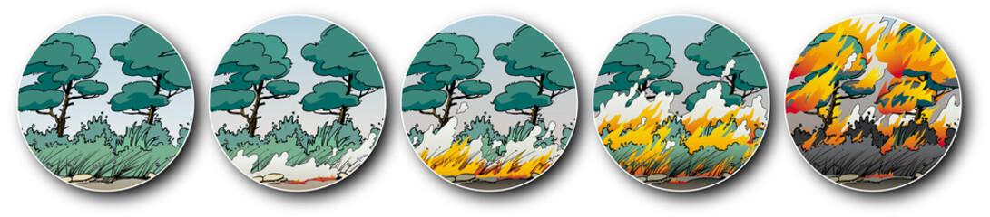 Incendies de forêts - La propagation du feu 1