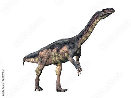 Plateosaurus - 24659087