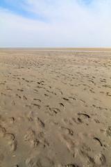 Wattenmeer