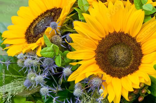 Sonnenblume, sommerlicher Blumenstrauß, Sommerblumen