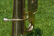 Tuba on the green grass