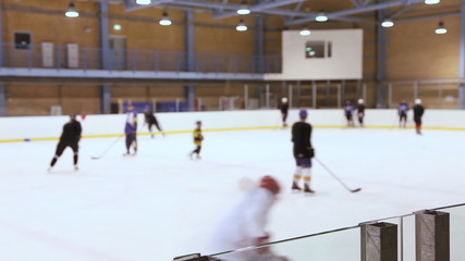 Ice hockey training