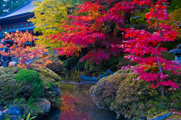 Japanese autumn