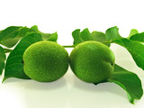A pair of green unripe walnuts. poster