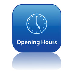OPENING HOURS Web Button (business contact about information)
