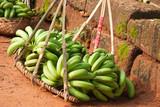 unripe bananas in basket poster