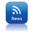 NEWS Web Button (feed internet media rss breaking headlines ok)