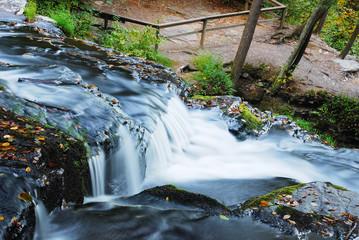 Creek in woods