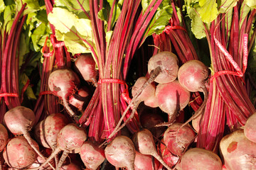 Red beets with tops, horizontal